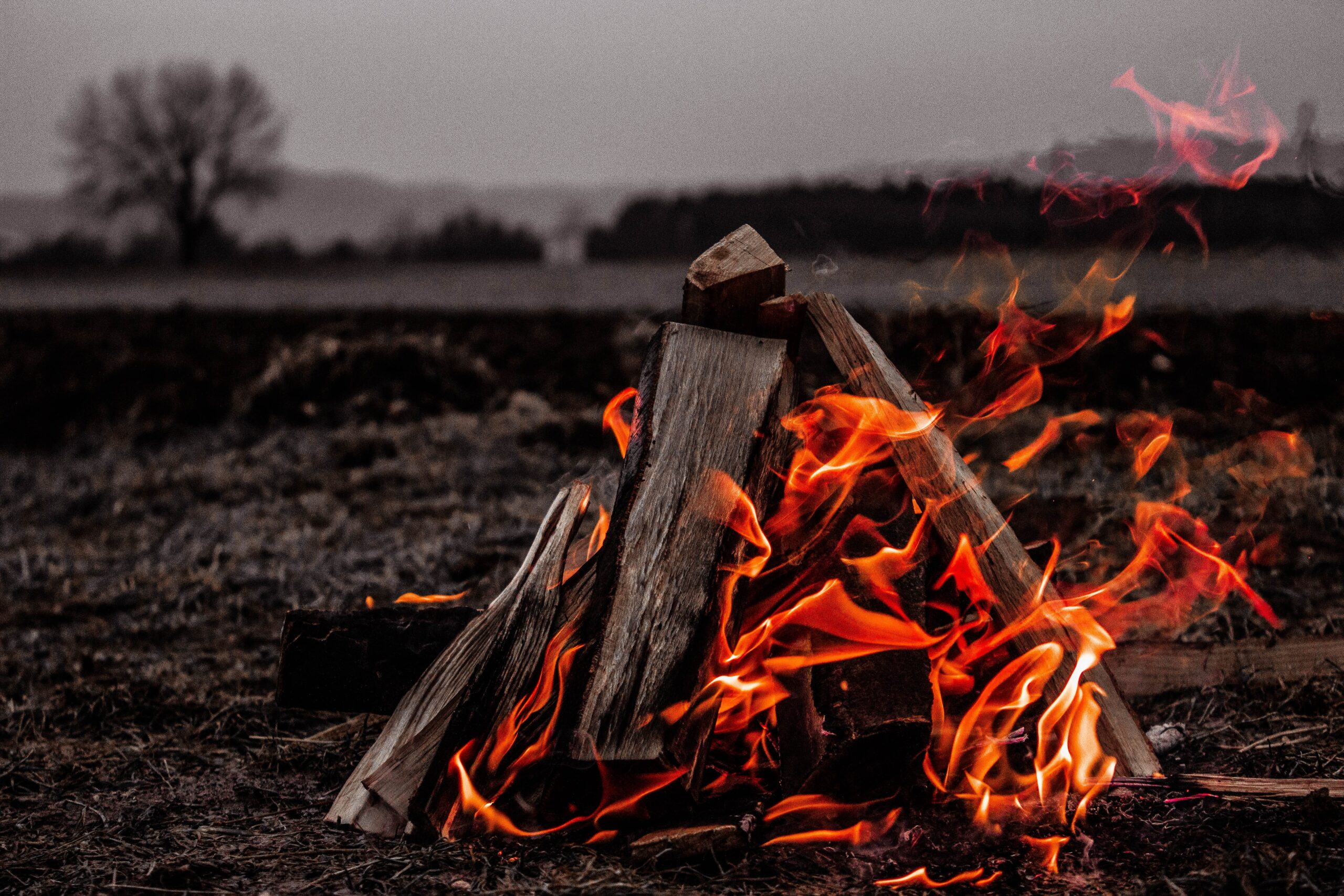 How to build a fire with wet wood