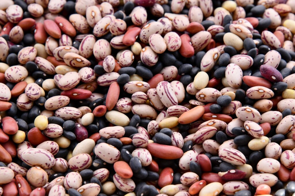 beans-for-long-term-storage